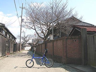 2009030127.jpg