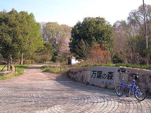 2009041165.jpg