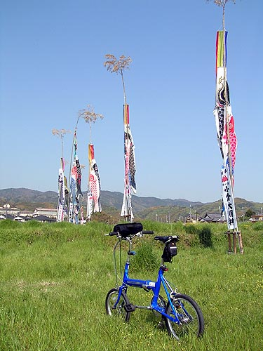 2009041912.jpg