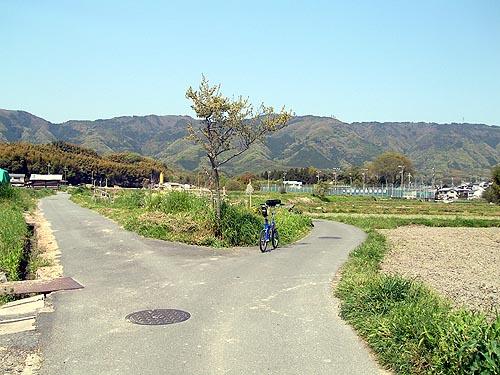 2009041928.jpg