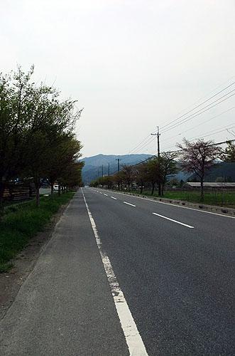 2011053101.JPG