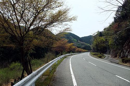 2011053106.JPG