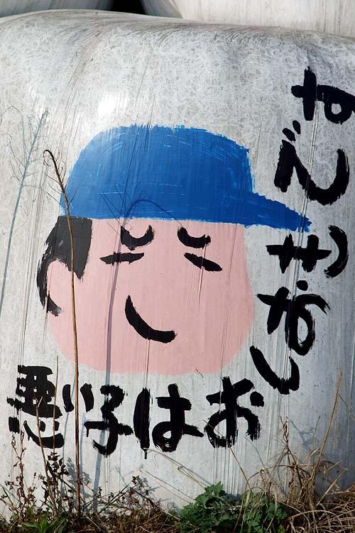20101107001.JPG